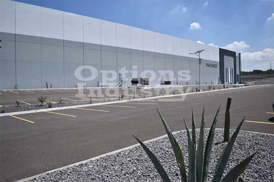 TEPEJI DEL RIO, Hidalgo, Mexico, ,2 BathroomsBathrooms,Bodegas,Alquiler-Arriendo,42119