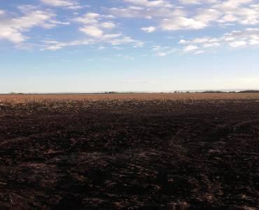 Concepcion del Uruguay, Entre Ríos, Argentina, ,Campos,Venta,42676