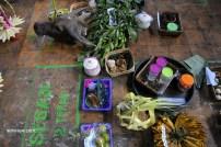 Kepala kerbau beserta sesaji sebagai sedekah disajikan untuk ritual cembengan sebagai tanda mengawali masa gilingan tebu, Kamis (12/5) di Pabrik Gula (PG) Tasikmadu Karangayar Jawa Tengah.