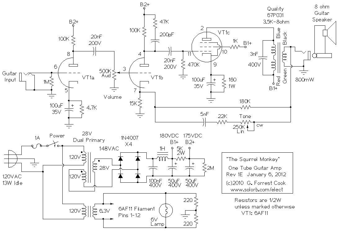 hight resolution of squirrel monkey schematic