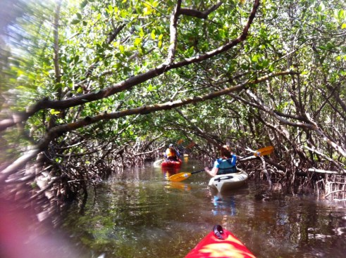 Dads Paddle Free on Father's Day 2012 with Grande Tours in Placida, Fla.