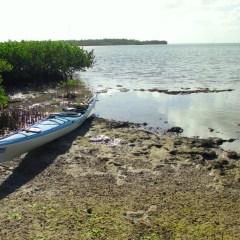 Paddling the Florida Keys with Burnham Guides