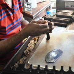 Video: Cigar Rolling in Santa Domingo, Dominican Republic