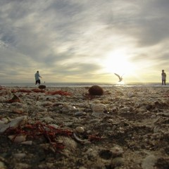 Evening on Englewood Beach with My GoPro Hero 3
