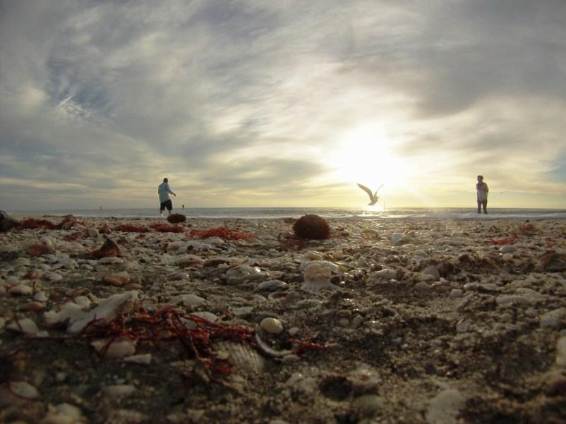Beachcombers on Englewood Beach, Fla., Jan. 25, 2015