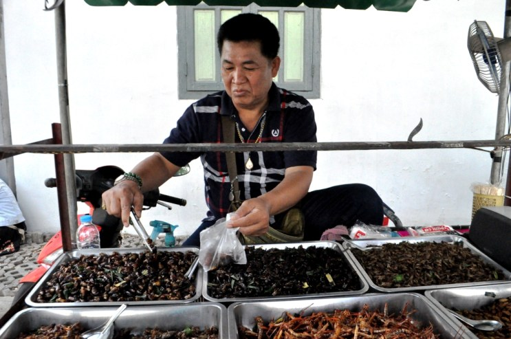 Street Vendor Scooping Up My Buggy Snack in Bangkok, Thailand