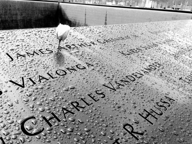 Rose in the Mist at the 9/11 Memorial, New York City, N.Y., Feb. 2016