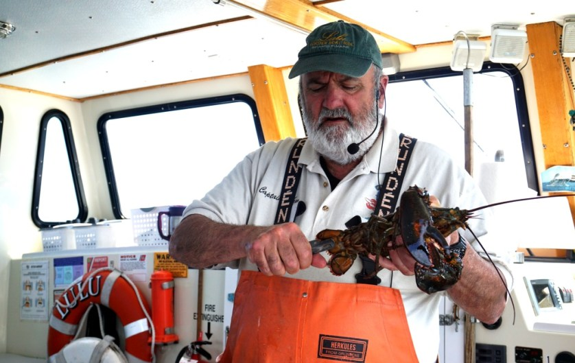 Capt. John Nicolai, a Lobster Fisherman, Tells Visitors All They Want to Know About Lobsters and More During the Lulu Lobster Boat Ride.