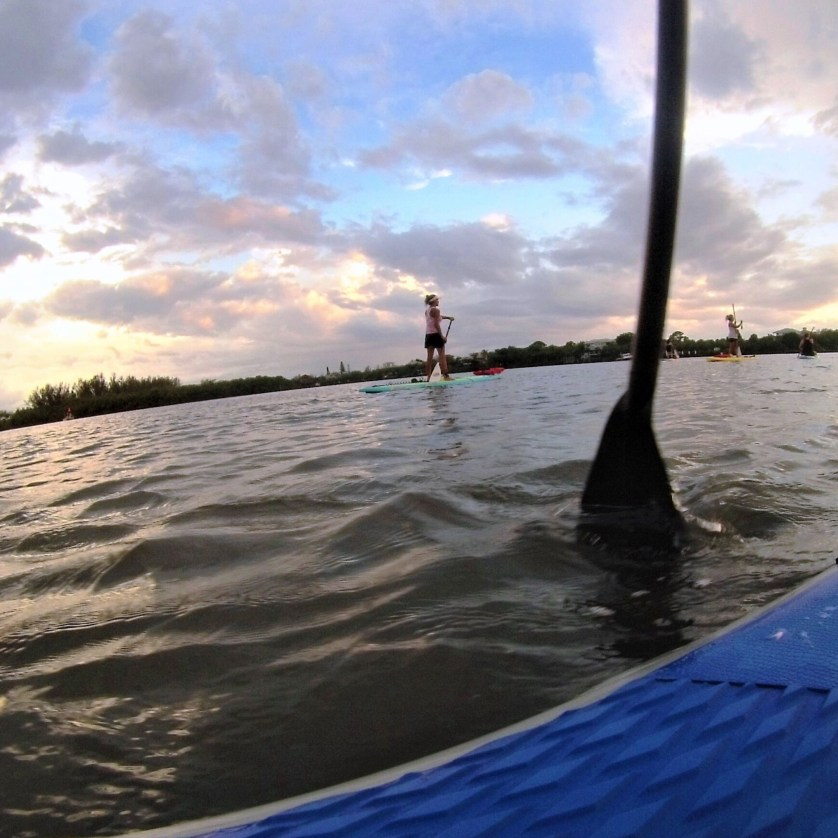 Stand-Up Paddle Boarding is a Full-Body Workout.