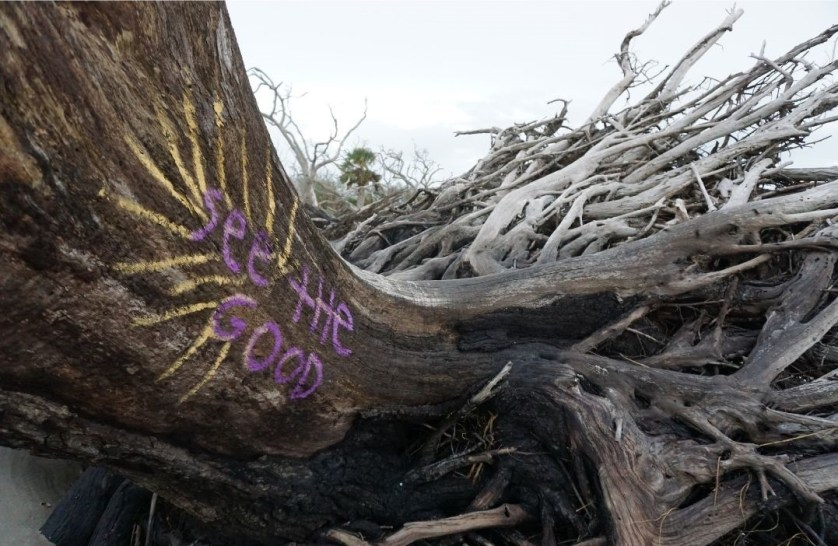 See the Good During These Challenging Times. Spotted at Driftwood Beach on Jekyll Island, Ga., Oct. 2020.