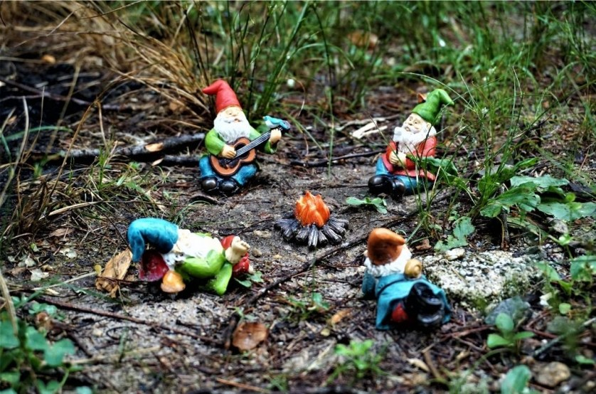 HipCamp Stay in Hendersonville, North Carolina: NERO Coffee + Camp  -Look for Gnomes!