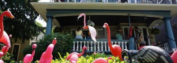 Travel to New York: Buffalo's Beautiful Gardens