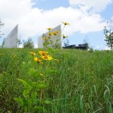 Visiting the Flight 93 National Memorial with My Dog