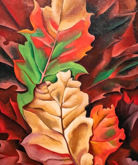 Autumn leaves - Lake Georges, N.Y., 1924