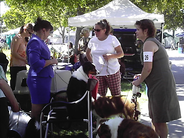 Poor show dogs, notice the people are standing the dog is in the chair.