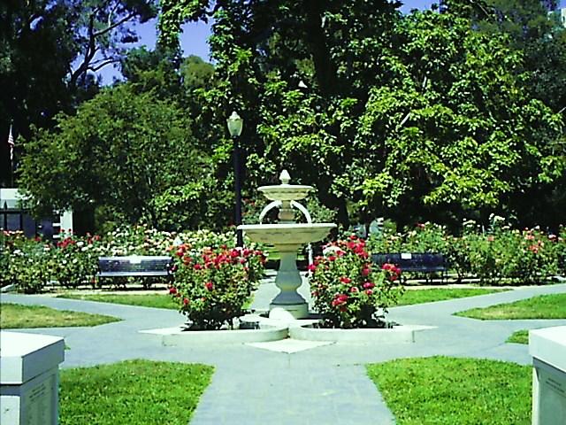 The rose garden in Capital park