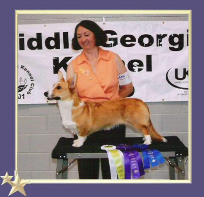 A previous UKC win for Candy