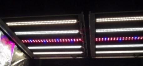 SolStix Rack with red-blue strip