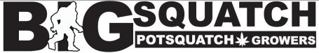 BigSquatch logo