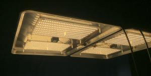 DBL SSX lit undershot