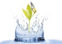 Soluciones para cuidar el agua