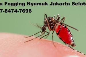 Jasa Fogging Nyamuk Jakarta Selatan