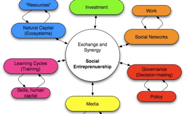 Social Entrepreneurship Solutionaries