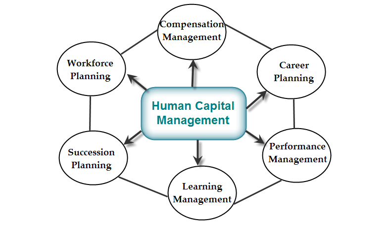 Human Capital Management System (HCMS) Importance