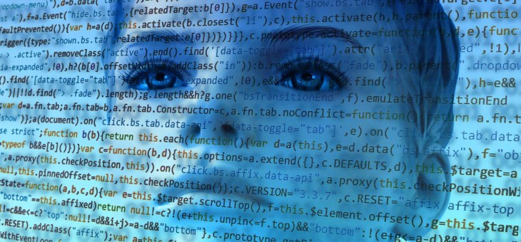 Aide technologique : environnement adapté ou environnement numérique accessible