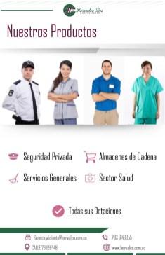 brochure 3-03