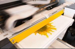 High Quality Printing