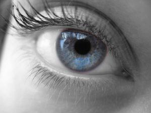 091122-eye-742460