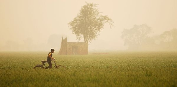 india-national-highway-field-boy_49151_600x450
