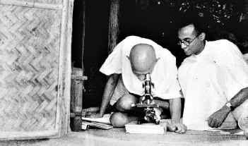 Looking through a microscope at Sewagram Ashram, 1939
