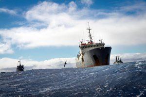OCEANS_CHASE_Water_Ships_Sea_Thunder_Bob_Barker_Sam_Simon_Shadows_Ian_Urbina