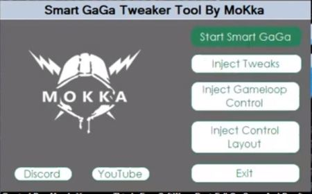 SmartGaga Tweaker Tool-Start SmartGaga