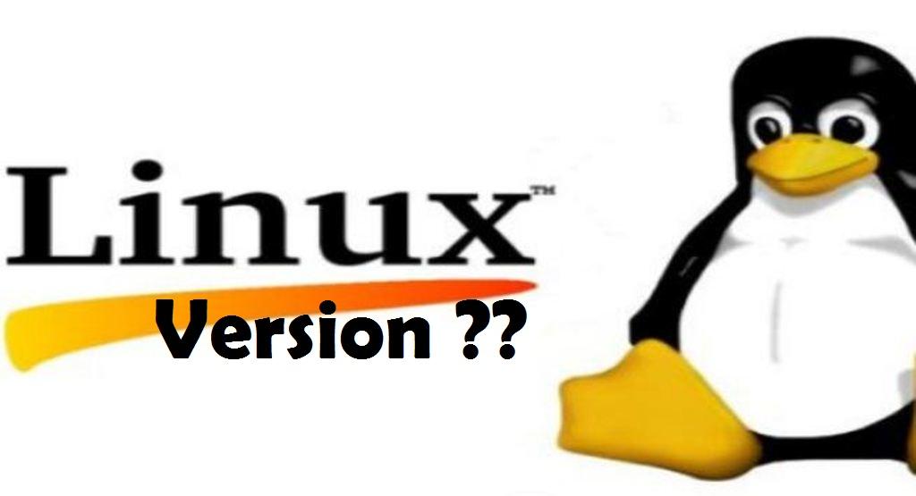 Check Linux Version