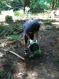 Hard at work watering plants