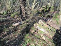 Pow Wood