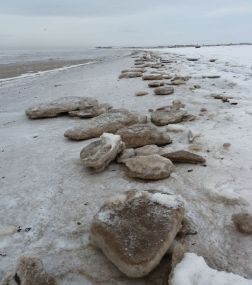 More recent ice-floes, Allonby, December 2010 (Photo: Eileen Palmer)