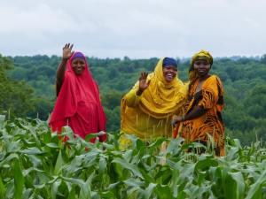Three Somali Bantu women in the field