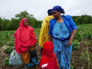 Somali Bantu people farming at Liberation Farms