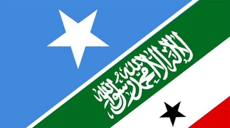 Somaliland and somalia flags