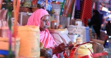 Dahabshiil, AECF Partner to Support SMEs in Somali Regions