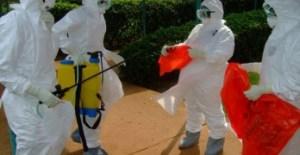 Ebola_virus_2014-