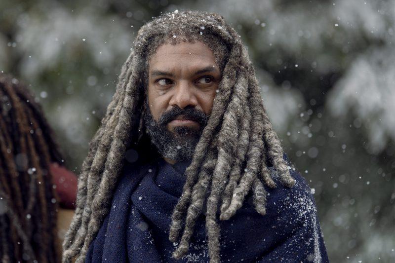 Khary Payton as Ezekiel, Danai Gurira as Michonne- The Walking Dead _ Season 9, Episode 16 - Photo Credit: Gene Page/AMC