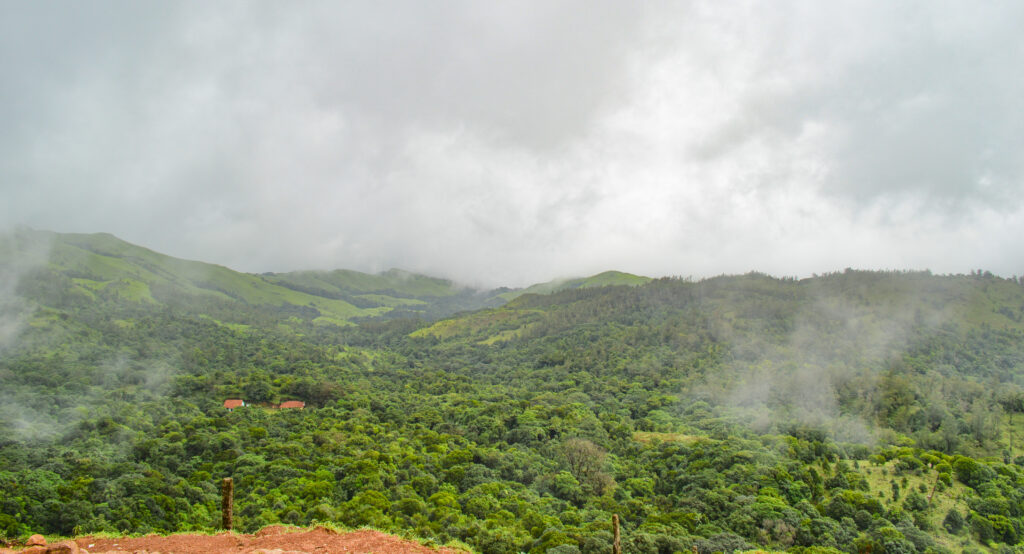 View from top of Talcauvery, Coorg @Rafiq Somani