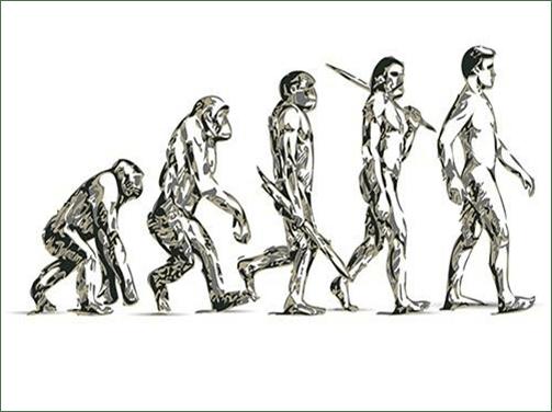 Transformación digital de las empresas evolución Darwin