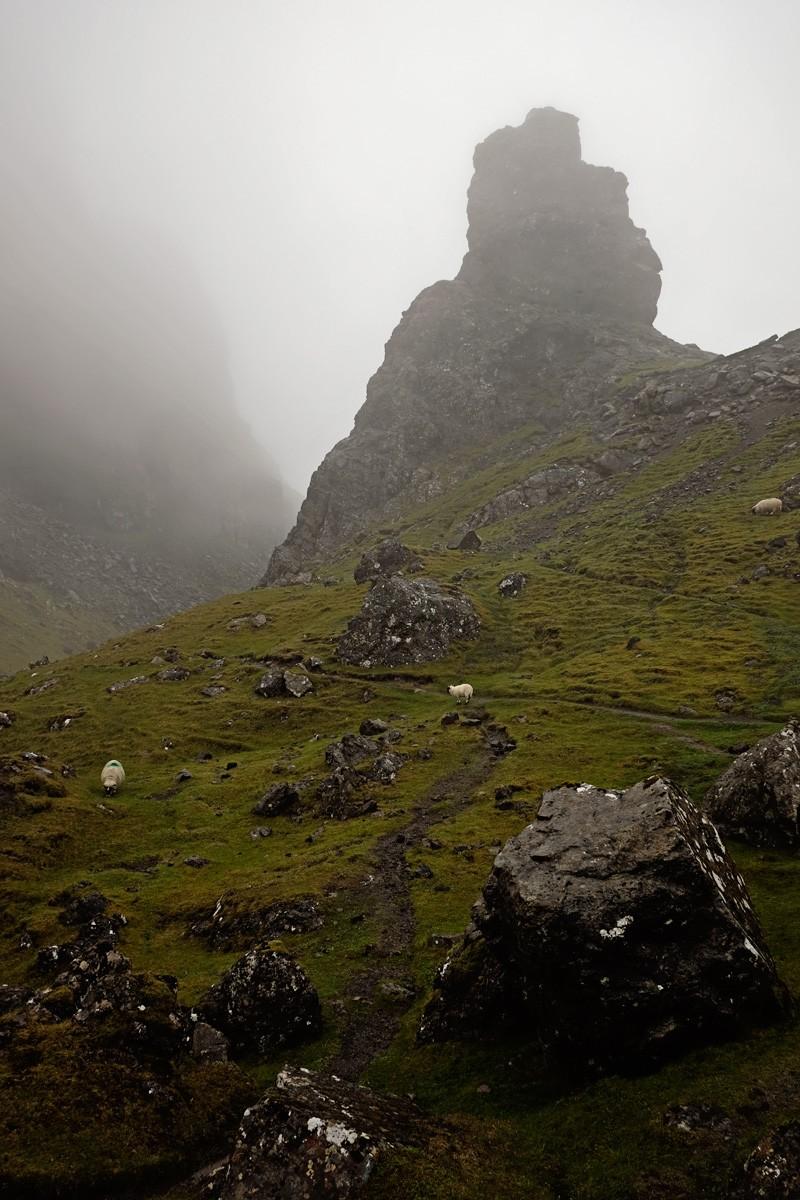 Foggy summit