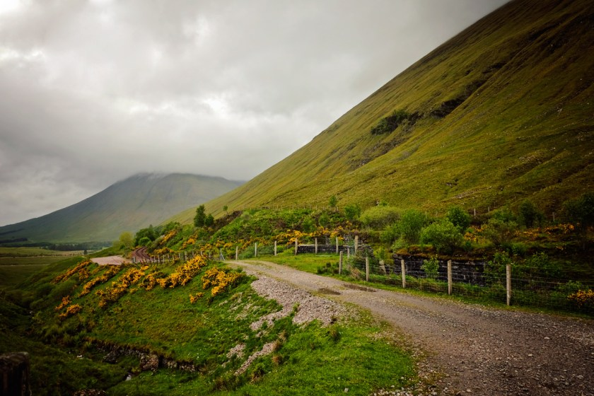 Scotland Path